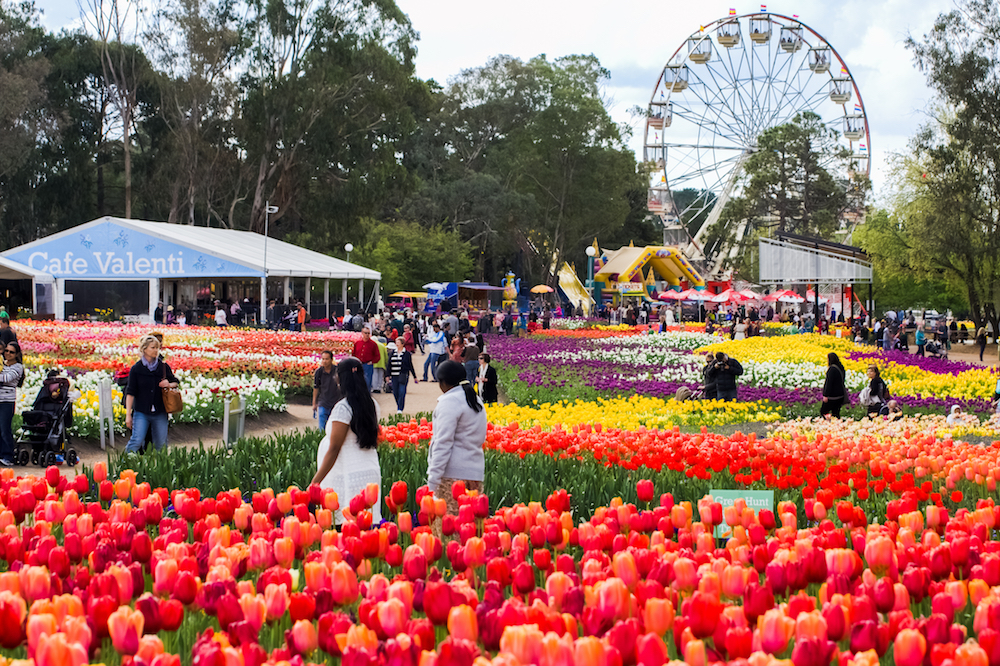 floriade primavera