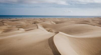 Dónde comer en el sur de Gran Canaria